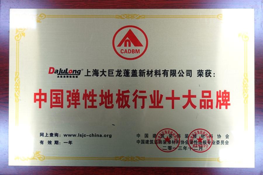 大巨龙连续多年荣获弹性pvc塑胶地板十大品牌