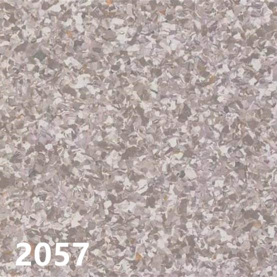 野心2057